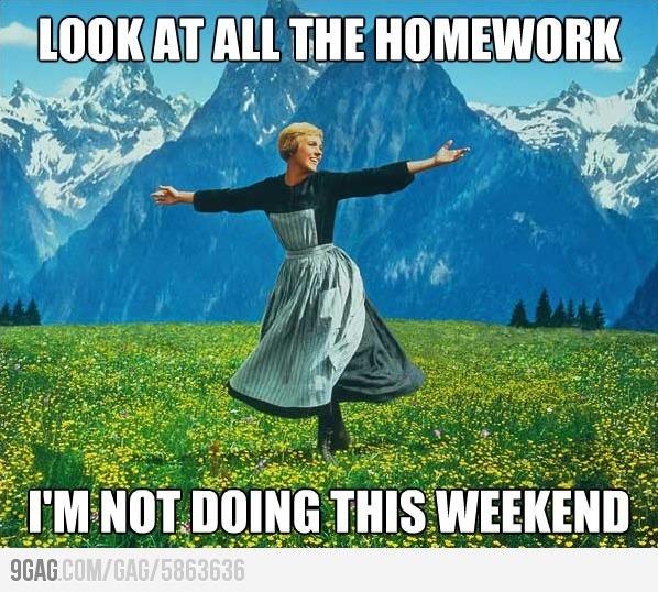 An essay on why i didnt do my homework